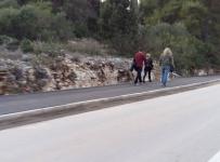Završeni grubi radovi na pješačkoj stazi Lumbarda - Korčula